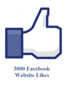 3000 facebook website likes