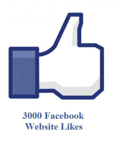 3000 facebook website likes