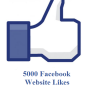 5000 facebook website likes