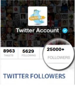 25000 Twitter Folloewrs