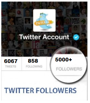 5000 Twitter Folloewrs (2)