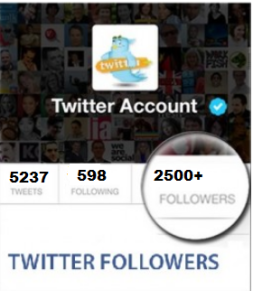 2500 Twitter Folloewrs