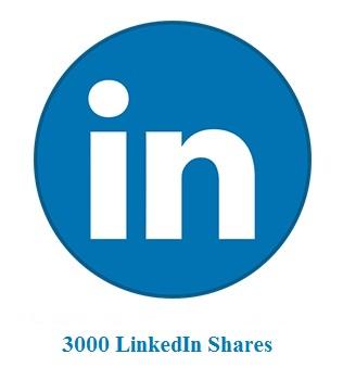 3000 LinkedIn Shares