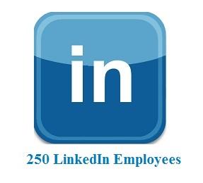 250 LinkedIn Employees