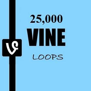 25 Vine Loops